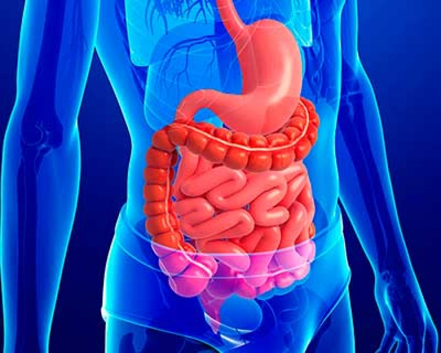 best foods to cleanse your colon